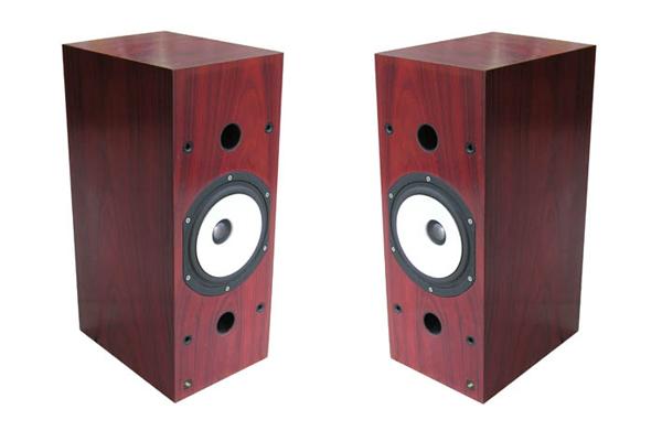 Thiel SCS2 loudspeaker