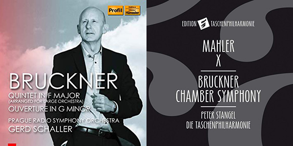 Bonus Recording of January 2019: Bruckner: String Quintet