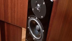 bowers and wilkins 805 d3. devore fidelity gibbon 3xl loudspeaker bowers and wilkins 805 d3
