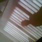 friccolodics's picture